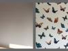 butterflies2014